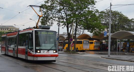 Транспорт в Брно